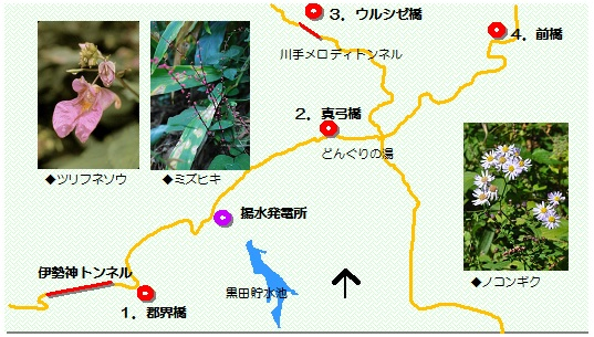 稲武橋マップ