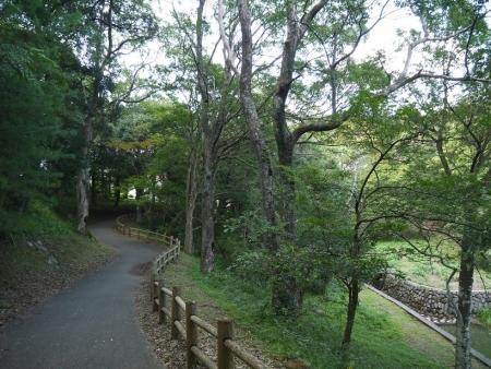 野岳湖(3)