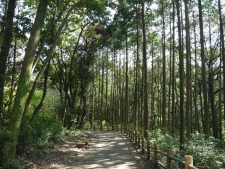 野岳湖(6)