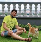 拳論ときどき猫論 BOXING with CATS