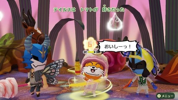 スイッチ版ミートピア妖精の国3 (25)