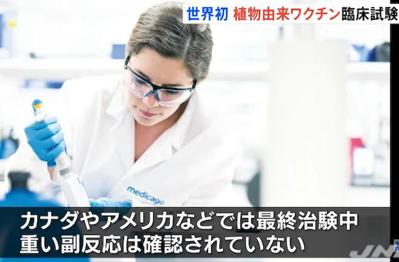 田辺三菱製薬 植物由来ワクチン 厚生労働省