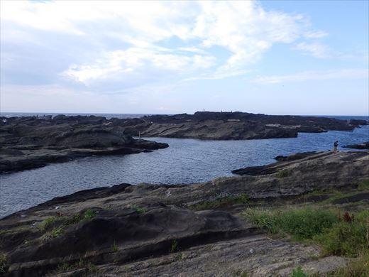 城ヶ島で釣り (13)