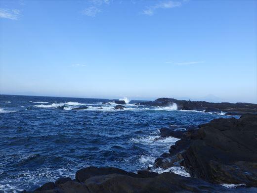 城ヶ島で釣り (14)