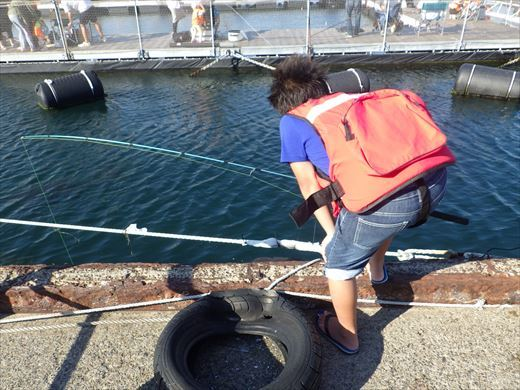 城ヶ島の船着き場 (4)